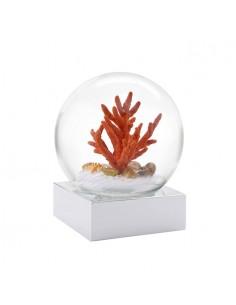 Snow Globe Coral Sea