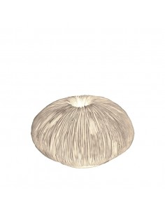 Lampe Coral M